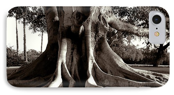 Moreton Bay Fig IPhone Case by Timothy Bulone