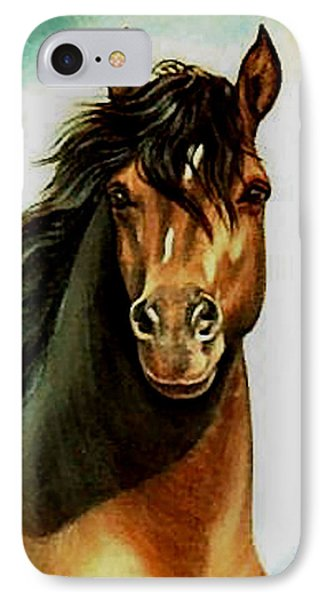 IPhone Case featuring the painting Morgan Horse by Loxi Sibley