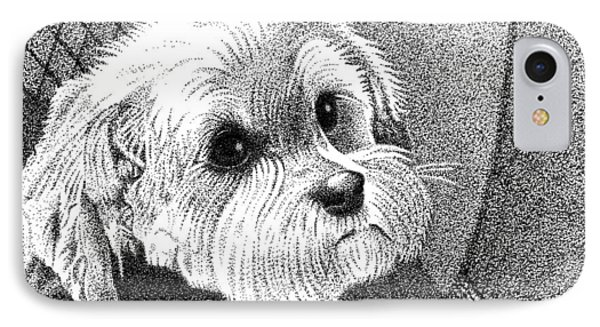 Morkie IPhone Case by Dustin Miller