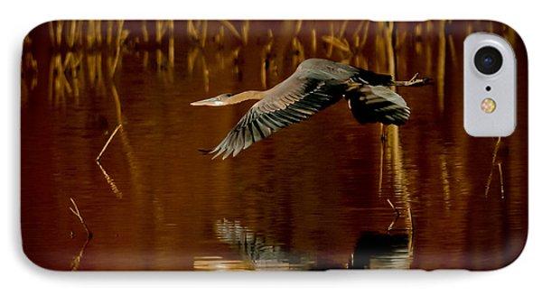 Heron Flying Through Rusty Bog IPhone Case by Robert Frederick