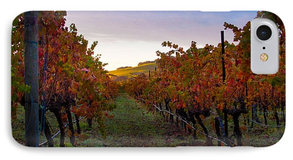 Morning At The Vineyard Phone Case by Bill Gallagher