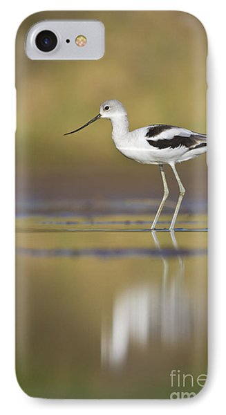 IPhone Case featuring the photograph Morning Avocet by Bryan Keil