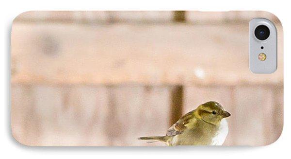 Morning Bird IPhone Case