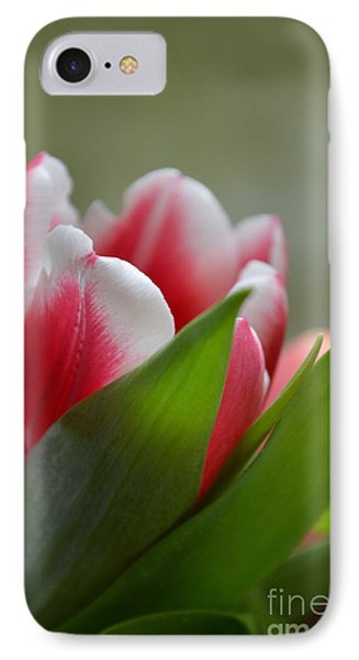 Morning Brilliance IPhone Case by Felicia Tica