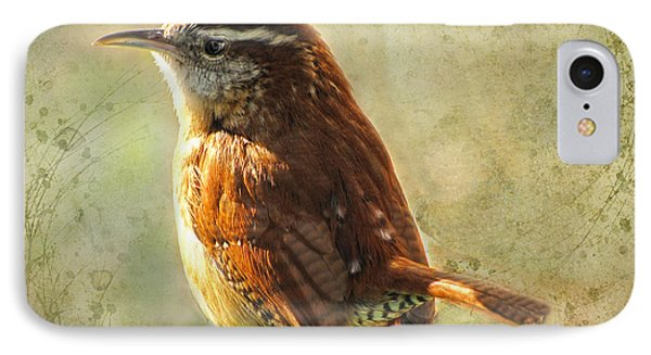 Morning Carolina Wren IPhone Case by Debbie Portwood