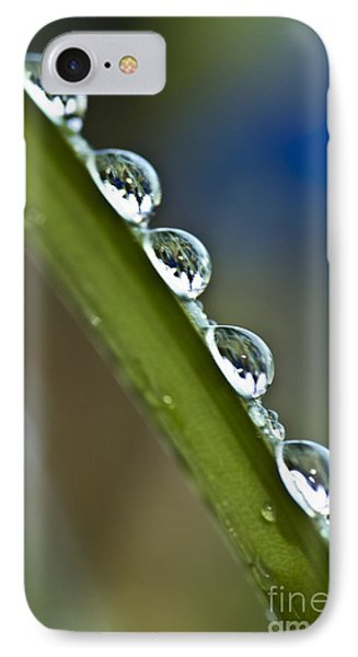 Morning Dew Drops 2 Phone Case by Heiko Koehrer-Wagner