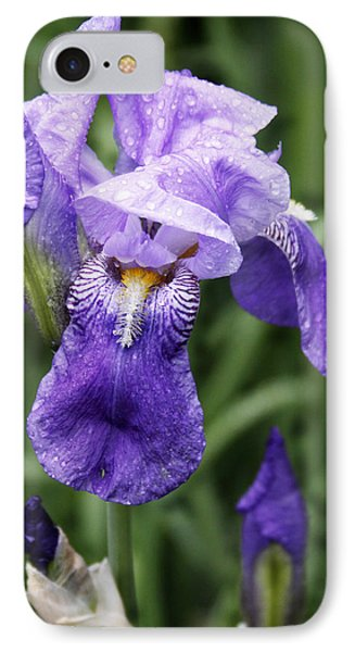 Morning Dew On The Iris IPhone Case by Larry Capra