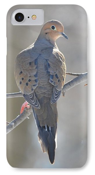 Mourning Dove IPhone Case by Richard Bryce and Family