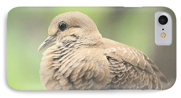 Morning Dove IPhone Case