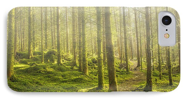 Morning Fog In The Forest IPhone Case
