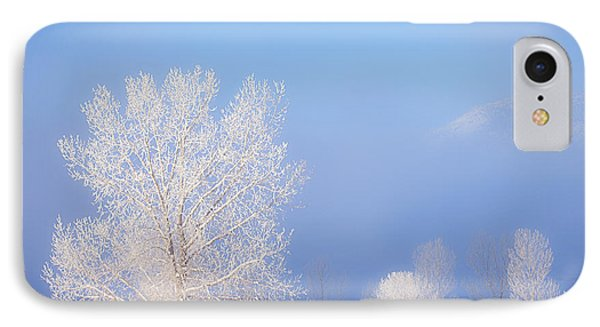Morning Frost Phone Case by Darren  White