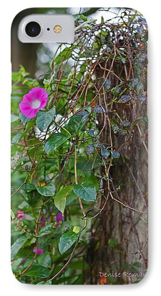 Morning Glory On The Fence IPhone Case