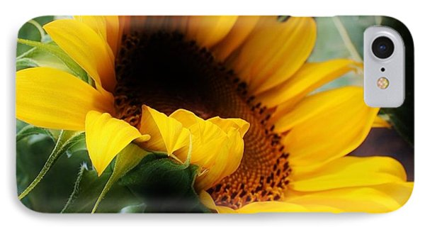 Morning Glow IPhone Case by Bruce Bley