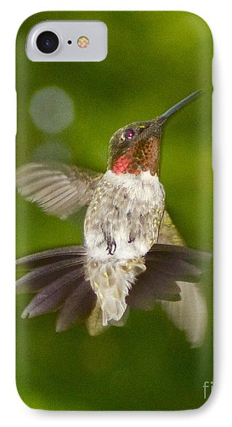 IPhone Case featuring the photograph Morning Greeter by Alice Mainville