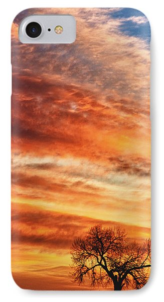 Morning Has Broken Phone Case by James BO  Insogna