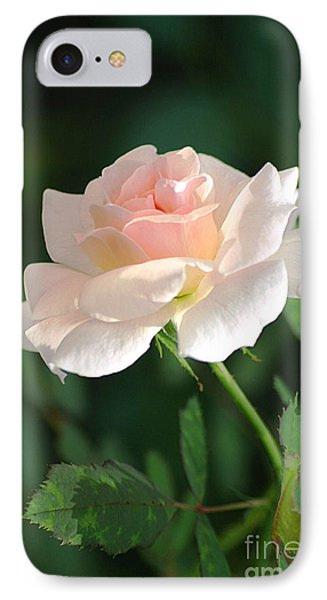 Morning Has Broken IPhone Case by Living Color Photography Lorraine Lynch