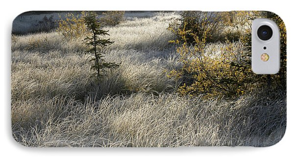 Morning Hoar Frost IPhone Case by Jessie Parker