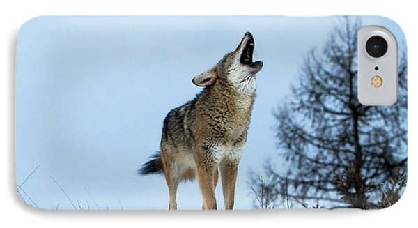 IPhone Case featuring the photograph Morning Howl by Jack Bell