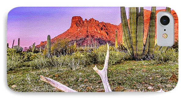 Morning In Organ Pipe Cactus National Monument Phone Case by Bob and Nadine Johnston