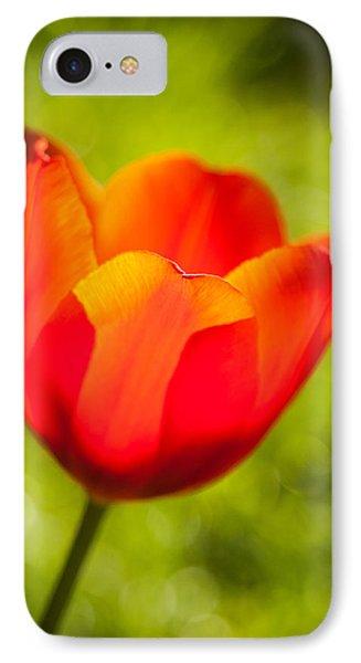 Morning Joy Phone Case by Davorin Mance
