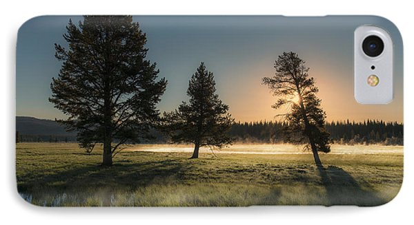 Morning Light In Yellowstone Phone Case by Sandra Bronstein
