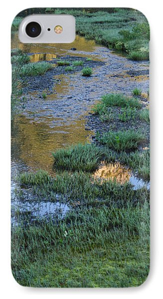 IPhone Case featuring the photograph Morning Magic Tipsoo Lake Wa by Cheryl Perin