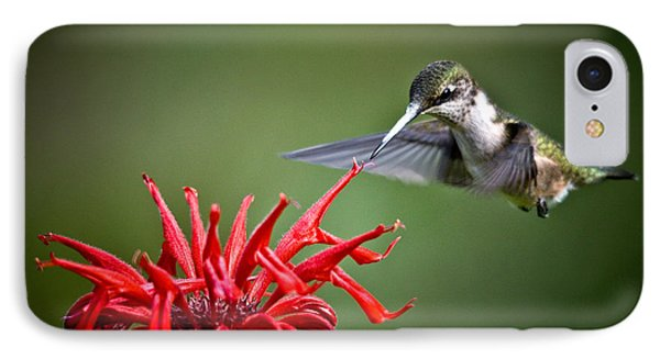 Morning Meal IPhone Case by Cheryl Baxter