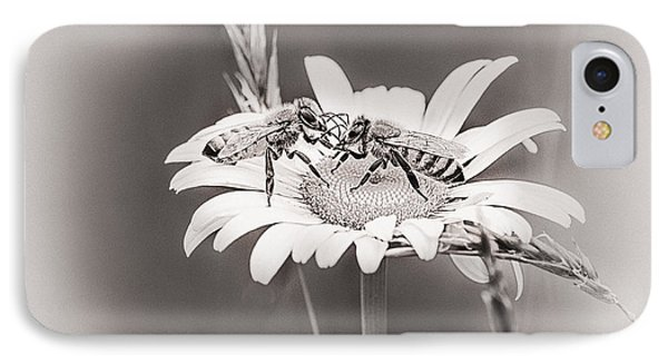 Honeybee iPhone 7 Case - Morning News by Susan Capuano