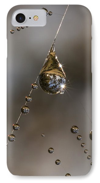 Morning Spider Web Dew IPhone Case by David Lester