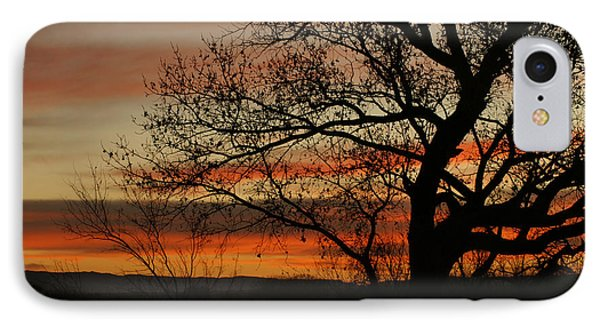 Morning View In Bosque IPhone Case by James Gay