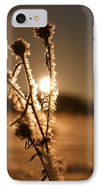 IPhone Case featuring the photograph Morning Walk by Miguel Winterpacht