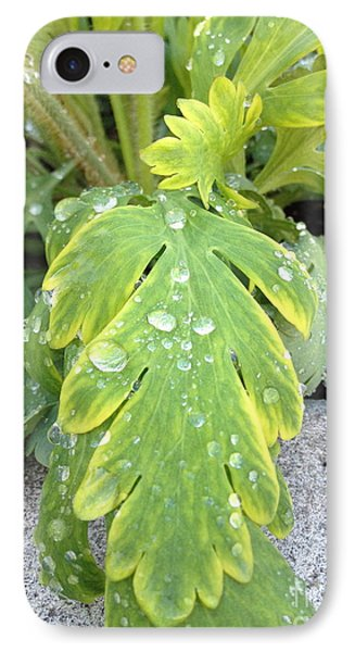 IPhone Case featuring the photograph Mornings Dew by Margie Amberge