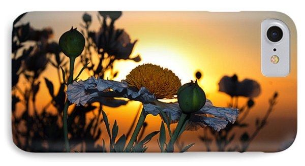 Morning's Glory IPhone Case by Richard Stephen