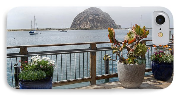 IPhone Case featuring the photograph Morro Bay And Plants by Debra Thompson