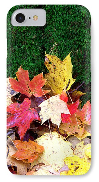 IPhone Case featuring the photograph Moss And Leaves by Jim McCain