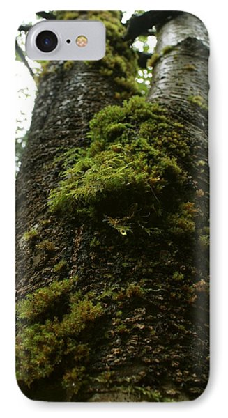 IPhone Case featuring the photograph Moss Covered Tree by Amanda Holmes Tzafrir