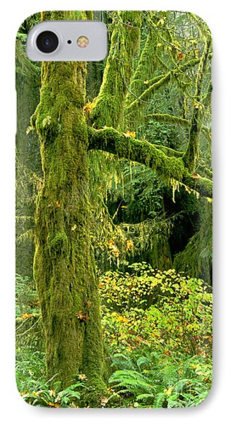 IPhone Case featuring the photograph Moss Draped Big Leaf Maple California by Dave Welling
