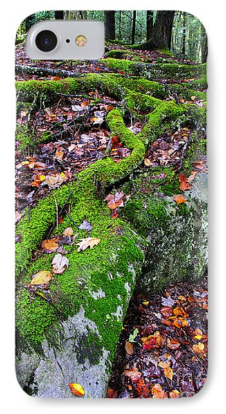 Moss Roots Rock And Fallen Leaves IPhone Case by Thomas R Fletcher