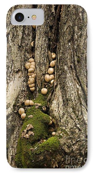 Moss-shrooms On A Tree IPhone Case by Carol Lynn Coronios