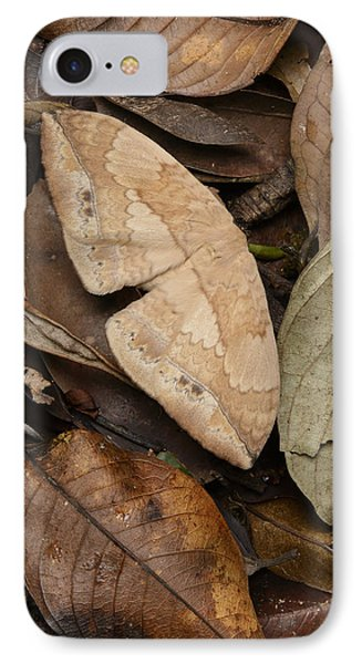 Moth Camouflaged Against Leaf Litter IPhone Case