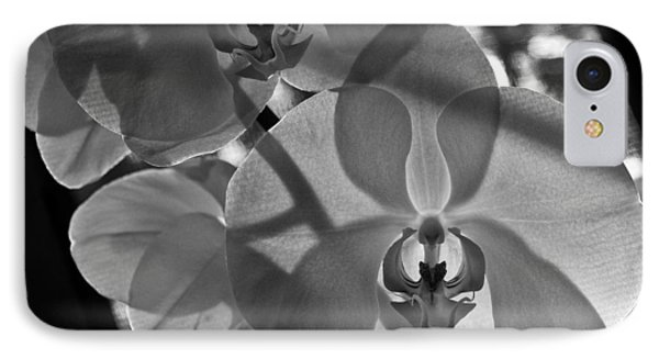 IPhone Case featuring the photograph Moth Orchid Backlit by Ron White