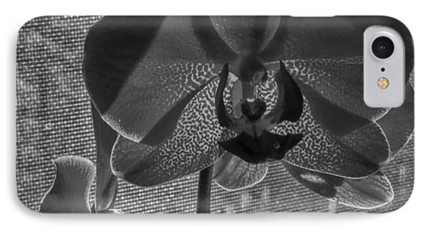 IPhone Case featuring the photograph Moth Orchid In Window by Ron White