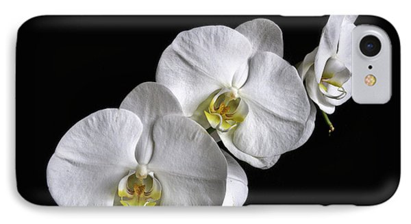 Moth Orchid Trio IPhone Case