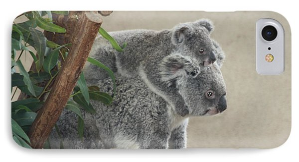 Mother And Child Koalas IPhone Case by John Telfer
