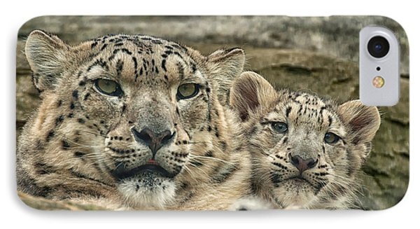 Mother And Cub IPhone Case by Chris Boulton