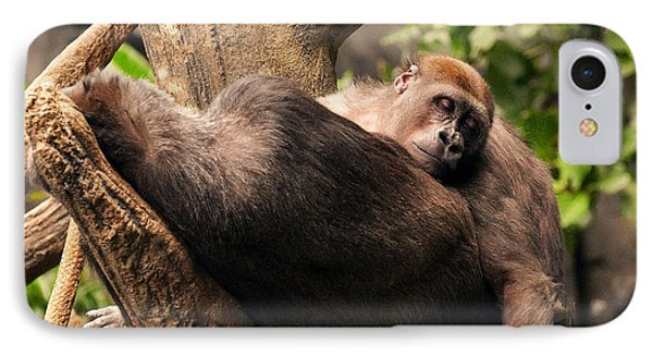 Mother And Youg Gorilla Sleeping In A Tree IPhone Case by Chris Flees
