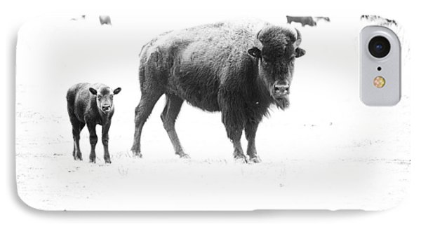 Mother Bison And Her Calf Phone Case by Melany Sarafis