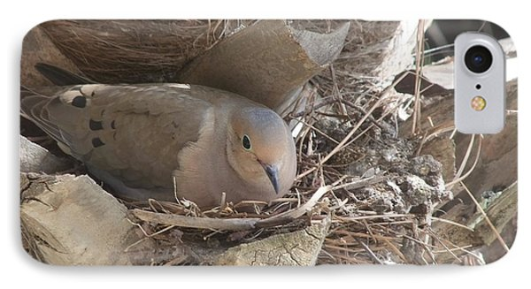 IPhone Case featuring the photograph Mother Dove  by Deborah DeLaBarre