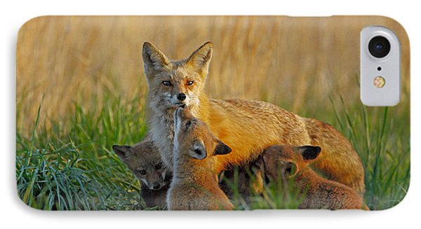 Mother Fox And Kits Phone Case by William Jobes