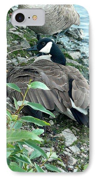 Mother Goose Phone Case by Nicki Bennett